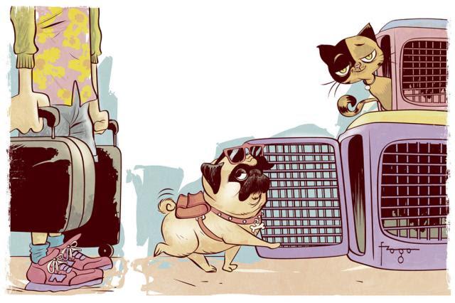 o que fazer com seu animal de estimação http://www.cantinhojutavares.com