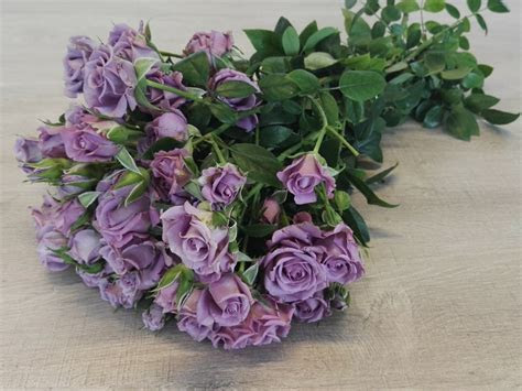 New amazing varieties of spray roses available!   Parfum