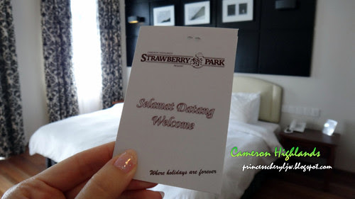 Cameron Highlands Strawberry Park room 2