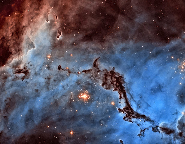 A month in Space: Hubble's Hidden Treasures Revealed