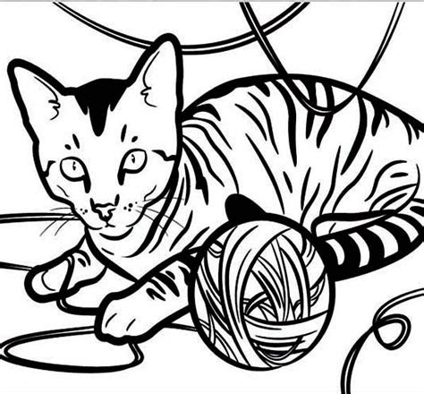 cat staring eyes coloring page cat coloring page