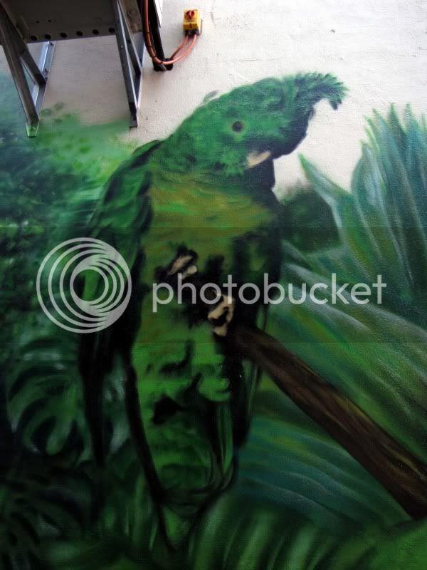 Saraton Jungle green ganggang