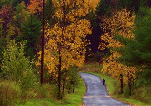 Walking into stillness