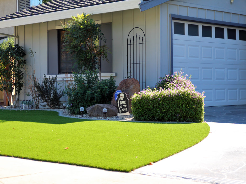 Turf Grass Citrus Springs Florida Design Ideas Front Yard
