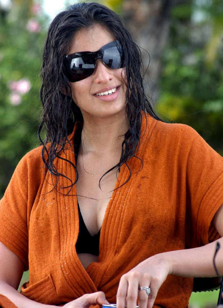 lakshmi rai latest hot photos 1161 Lakshmi Rai Hot Photos