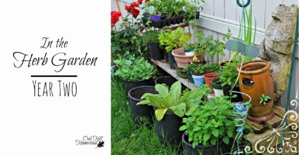 oak hill herbgarden2  simple life simple saturdays blog hop
