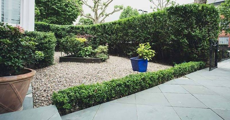 Get Inspired For Small Front Garden Ideas Uk images