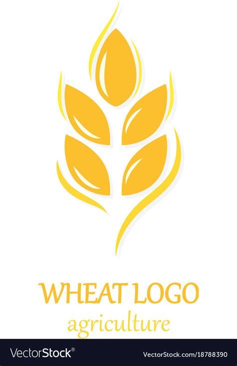 agriculture wheat logo icon design template vector image