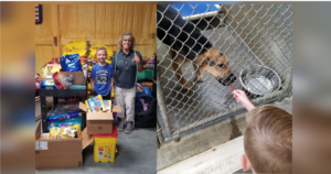 8-Year-Old Donates All Of His Birthday Presents To Animal Shelter