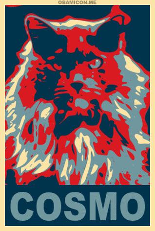 Cosmo 4 Cat Prez!