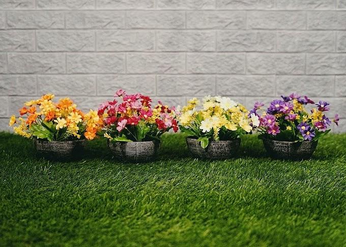 Pot Bunga Ruang Tamu   Ide Rumah Minimalis