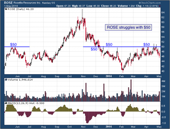 1-year chart of ROSE (Rosetta Resources, Inc.)