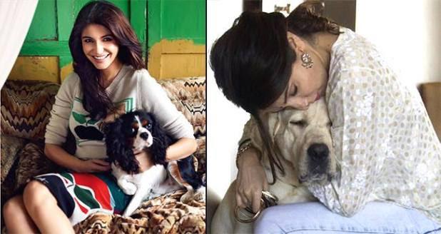 Anushka Sharma turns 30, all Set to Build an Animal Shelter