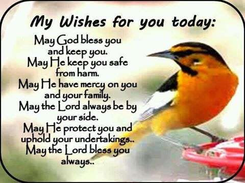 My Wishes For You Today Goodmorningpicscom