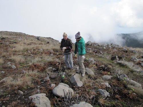 Foto 16-Campo de Educação Ambiental do Cabeço da Lenha-12.02.12(RQ)