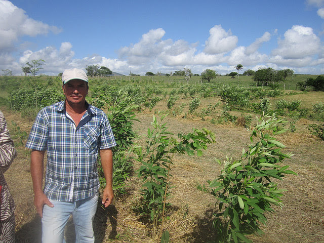 "Parched, hard-packed land without vegetation is now green and fertile thanks to farmer and livestock breeder José Antonio Borges, who regenerated the land, supported by technicians from Adapta Sertão. It is now what he refers to as ""the forest"" where he grows watermelons and fruit trees, in Brazil's semi-arid Northeast. Credit: Mario Osava / IPS"