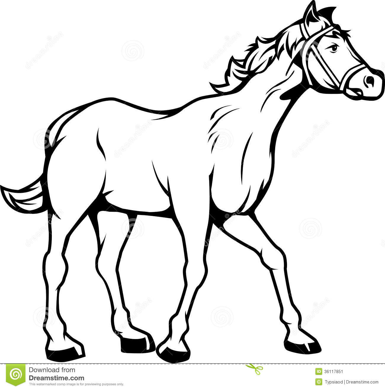 Black And White Horse Clipart