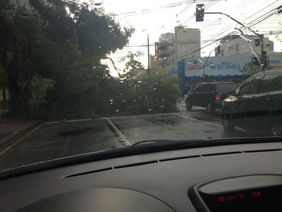 Chuva causa estragos em Curitiba  (Foto: Lina Hamdar/RPC)