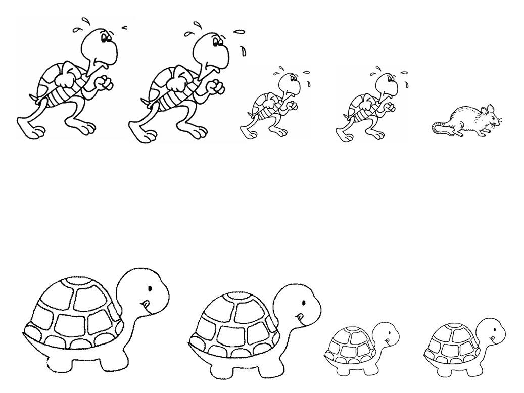Coloriage gratuit de tortue a imprimer