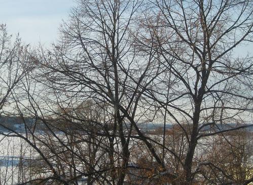 tonsberg :: view