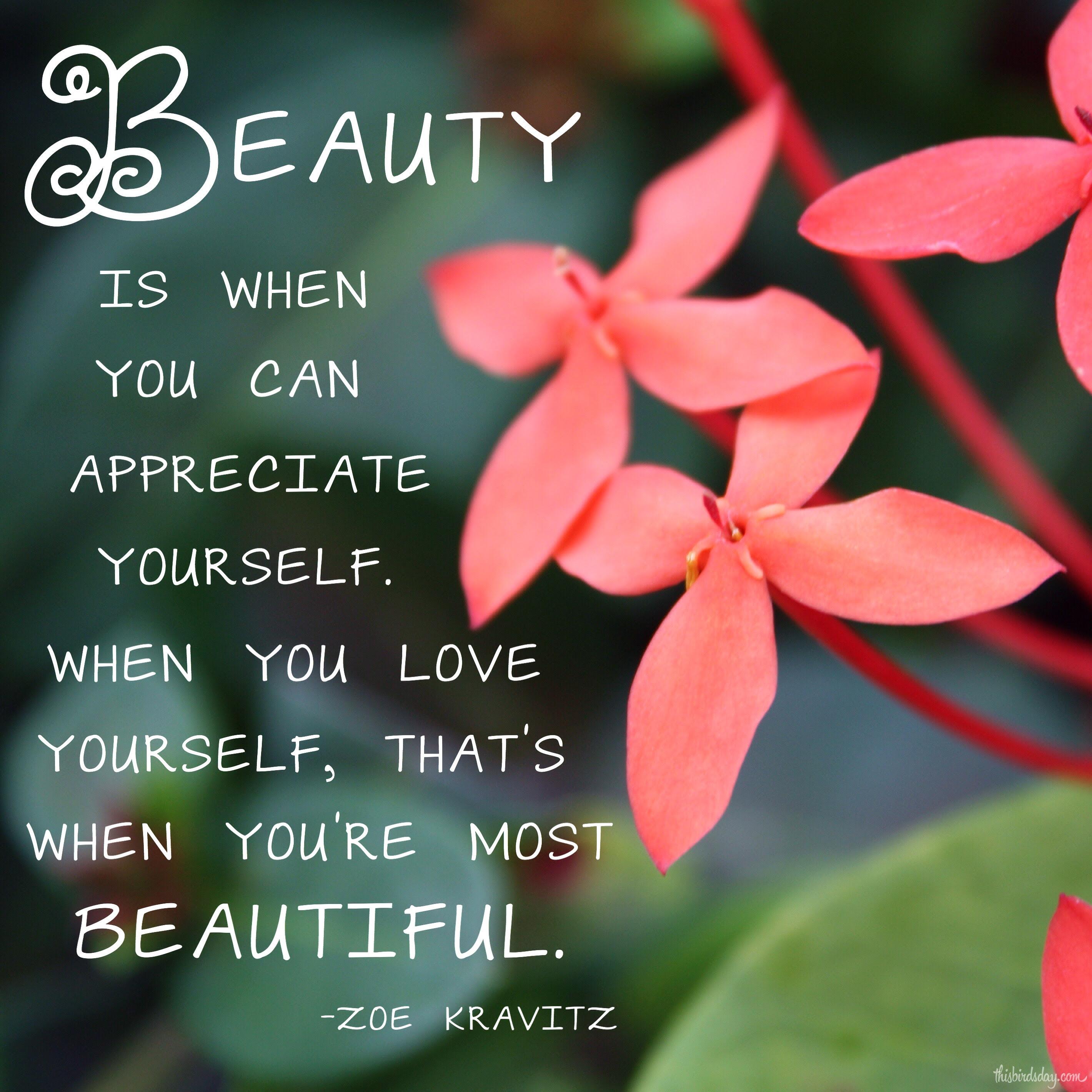 Beauty Quote Zoe Kravitzjpg This Birds Day