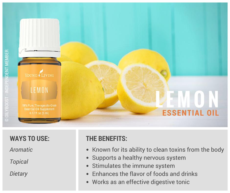 Hasil gambar untuk essential oil lemon