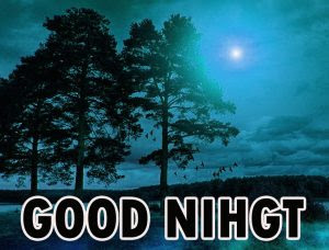 421 Beautiful Good Night Wishes Images Pics Wallpaper For Whatsapp