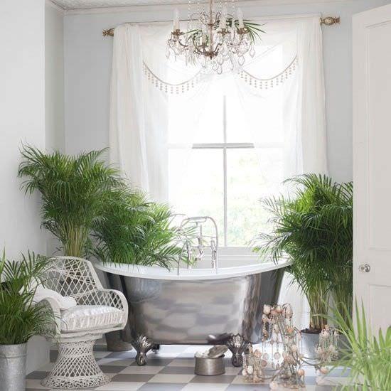 Grow Tropical Indoor Plants   The Garden Glove