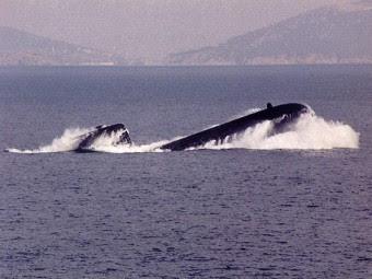 ДЭПЛ проекта Type 209. Фото с сайта denizaltici.com