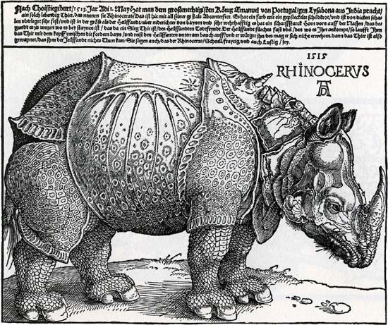 Dürer, The rhinoceros, 1515