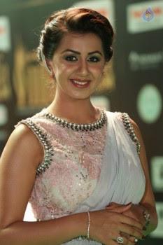 Nikki Galrani Pics - 25 of 30