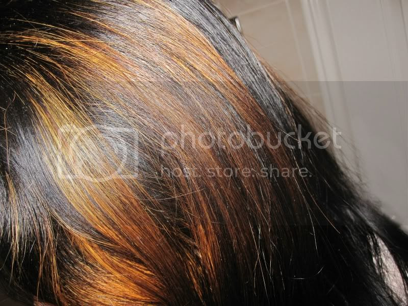Semi Permanent Hair Color Honey Blonde Hair Color 20162017