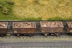 Wibdenshaw scrap train