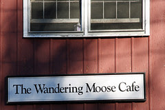 The Wandering Moose