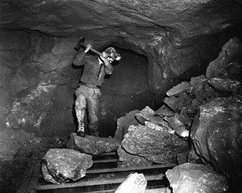 IT工作者是21世纪的煤矿工人吗?