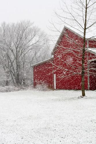 Snow by jenib320
