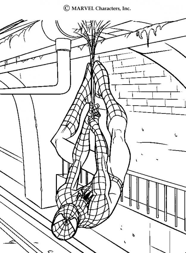 45 Top Amazing Spiderman Coloring Pages Download Free Images