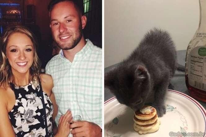 As pessoas estão enlouquecendo por este cara, que fez panquequinhas para seu gatinho de estimação