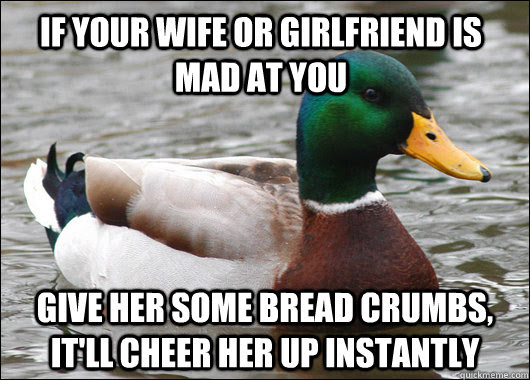 If Your Wife Or Girlfriend Is Mad At You Give Her Some Bread Crumbs