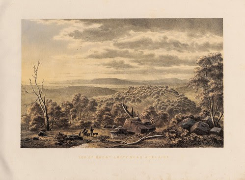 Top of Mount Lofty near Adelaide (S.A.)