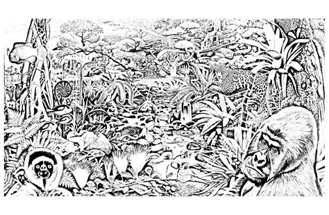 jungle forest animals jungle forest adult coloring pages