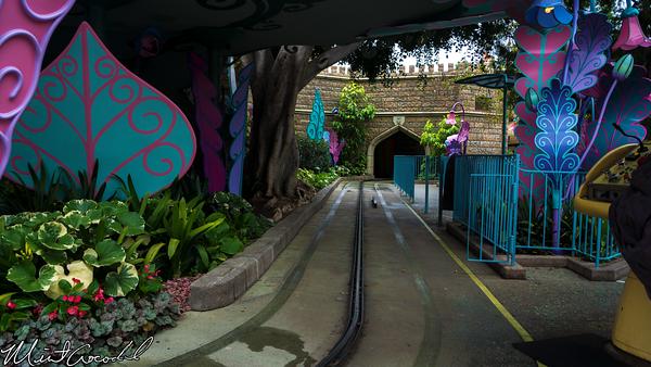 Disneyland Resort, Disneyland,  Alice, Wonderland, Rain, Clean, Custodial, Close, Closed
