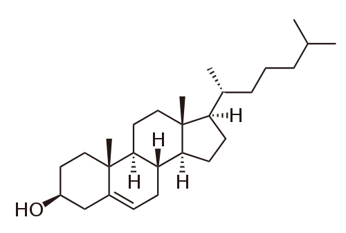 http://upload.wikimedia.org/wikipedia/commons/thumb/9/9a/Cholesterol.svg/500px-Cholesterol.svg.png