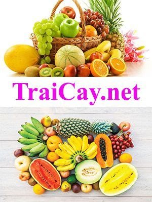 TraiCay.net
