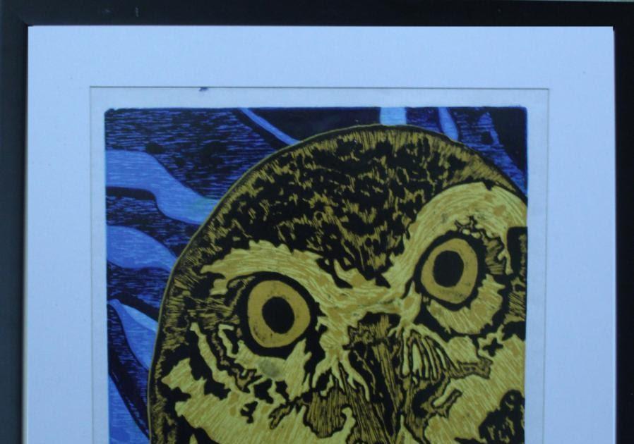Burung Hantu Sketsa Gambar Kolase Hewan - Contoh Sketsa Gambar