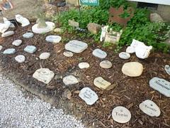 Albert's Garden