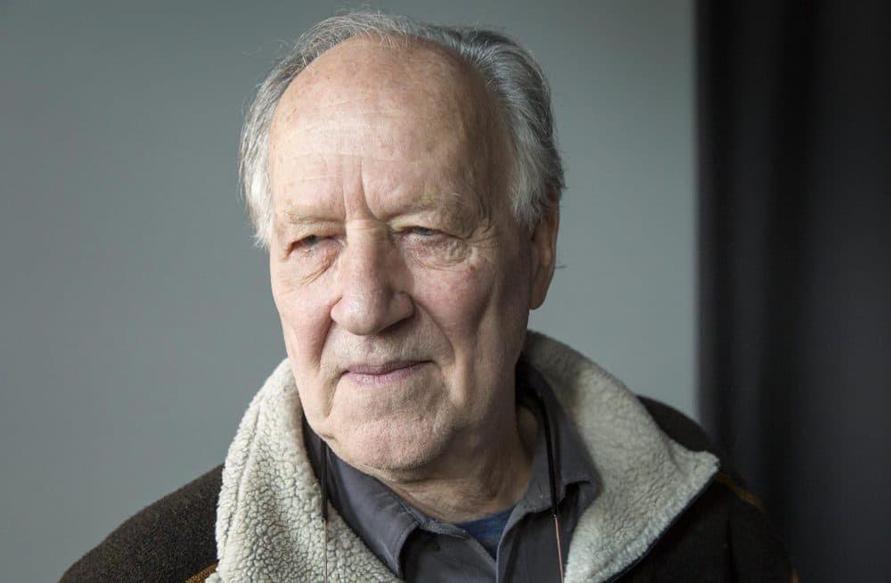Resultado de imagem para Werner Herzog