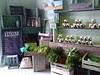 L'épicerie de Vénat