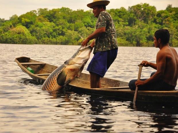 Couro do animal é utilizado como matéria-prima na região (Foto: Agecom/Divulgação)