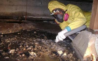 Crawl Space Cleaning Walnut Creek 1